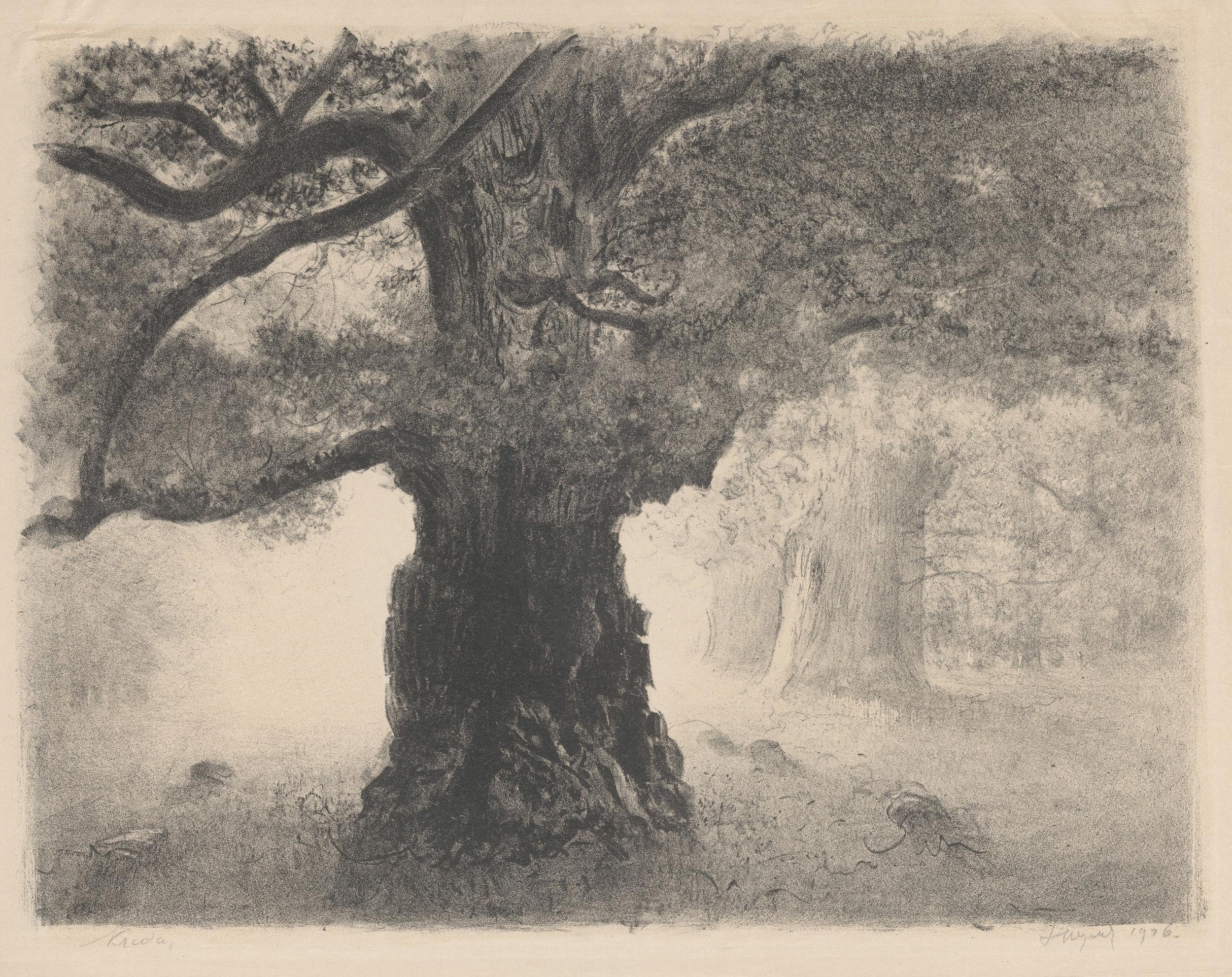 """Leon Wyczółkowski """"Dąb w Rogalinie"""", 1926 rok, źródło: Muzeum Narodowe w Warszawie"""
